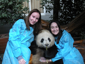 photo with a panda