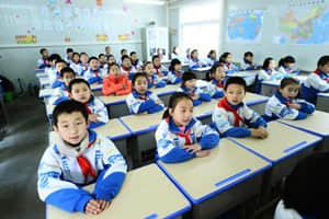 Primary Schoold