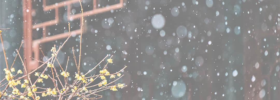 Shanghai Weather in February