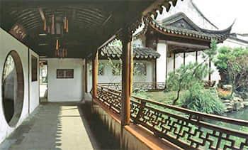 A Branch Beyond Bamboo Porch