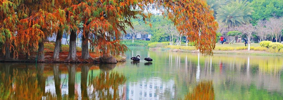 Xiamen Weather in November