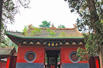 the shaoln temple