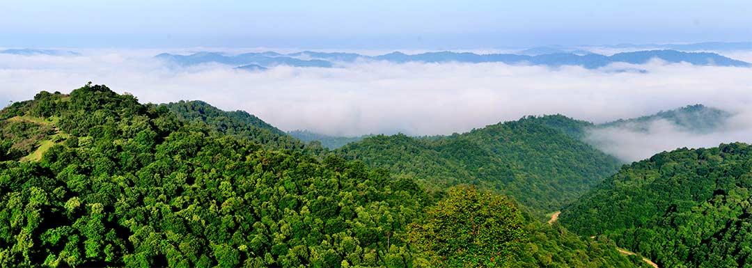 Zhongnan Mountain