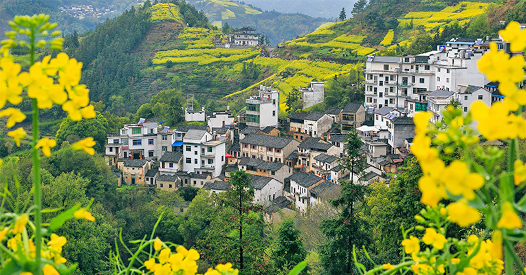 a Village in Wuyuan