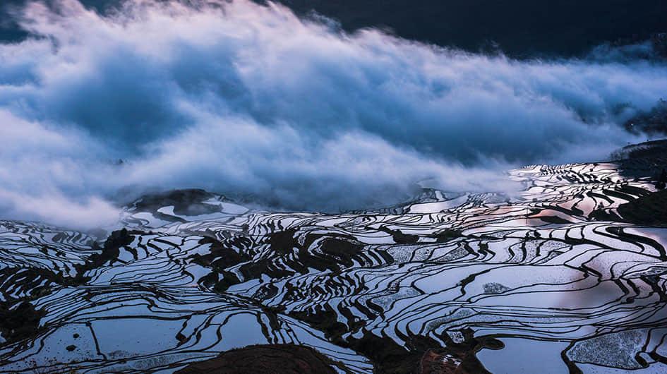 beautiful yuanyang