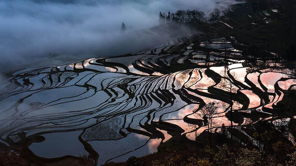 colorful Yuanyang Rice Terrace Field