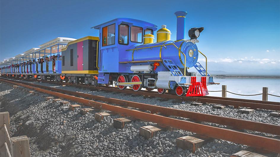 chaka salt lake small train